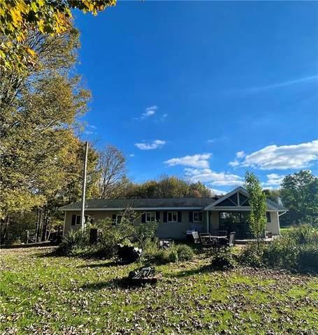 250 Mellon Road, Amboy, NY 13493 (MLS #S1373926) :: BridgeView Real Estate