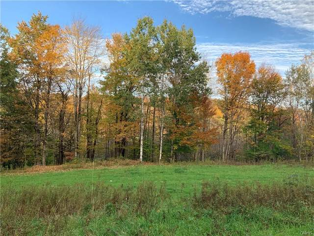 1379 Erieville Road, Georgetown, NY 13072 (MLS #S1374091) :: Thousand Islands Realty