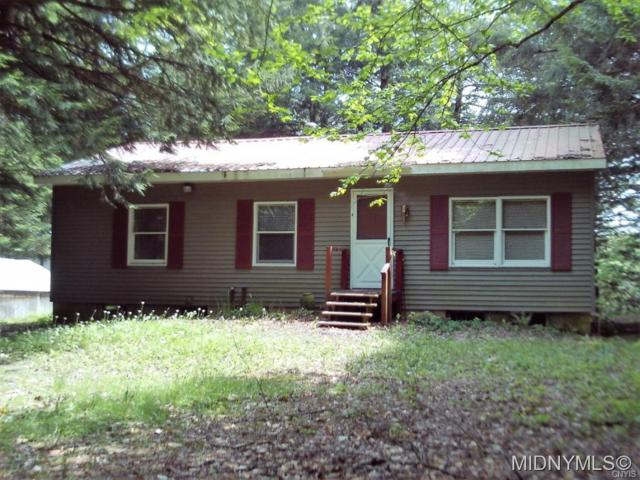 9036 Woods Road, Remsen, NY 13438 (MLS #1802443) :: Thousand Islands Realty