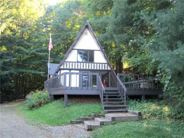 7455 Myer Hill Road Road, East Otto, NY 14729 (MLS #B1004053) :: The Rich McCarron Team