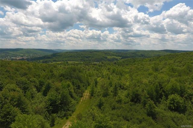 No # Bakerstand Rd -198 Acres, Franklinville, NY 14737 (MLS #B1055124) :: The Rich McCarron Team