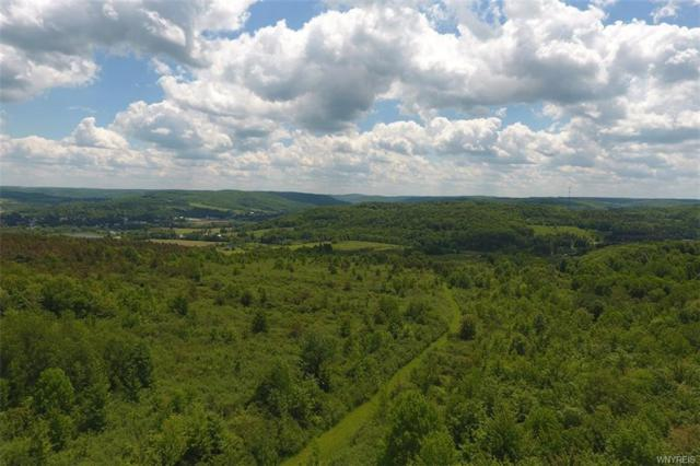 No # Bakerstand Rd- 103 Acres, Franklinville, NY 14737 (MLS #B1055226) :: The Rich McCarron Team