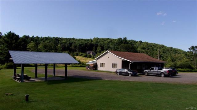 5920 State Route 417, Alma, NY 14715 (MLS #B1062965) :: The Rich McCarron Team