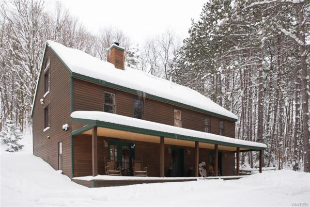 7120 Nys Route 242, Mansfield, NY 14731 (MLS #B1087246) :: The Rich McCarron Team