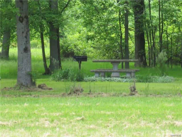 V/L Telegraph Road, Shelby, NY 14105 (MLS #B1089293) :: BridgeView Real Estate Services
