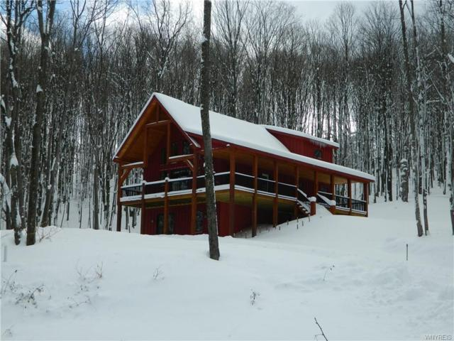 7061 Mill Valley Rd. Lot #15, East Otto, NY 14729 (MLS #B1093709) :: The Rich McCarron Team