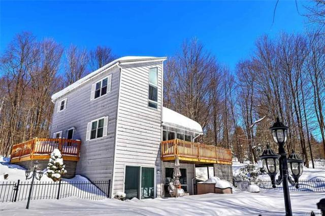 8246 Rohr Hill Road, East Otto, NY 14729 (MLS #B1103525) :: The Rich McCarron Team