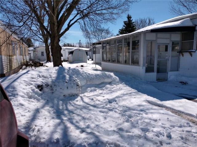 7930 Route 16 #28, Franklinville, NY 14737 (MLS #B1105162) :: The Rich McCarron Team