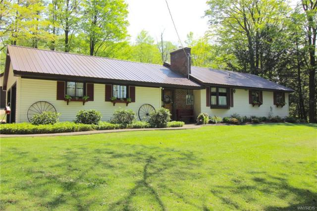 9717 Partridge Road, Colden, NY 14033 (MLS #B1112810) :: Updegraff Group