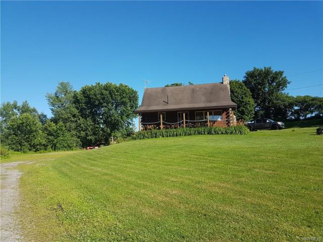 8143 S South Hill Road, Otto, NY 14766 (MLS #B1115555) :: Robert PiazzaPalotto Sold Team