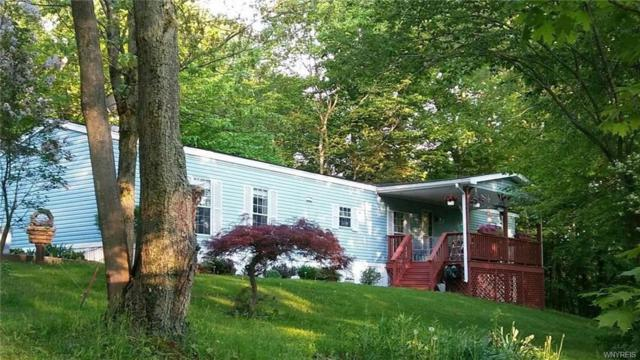 10200 Osmun Road, Freedom, NY 14060 (MLS #B1121407) :: The Chip Hodgkins Team