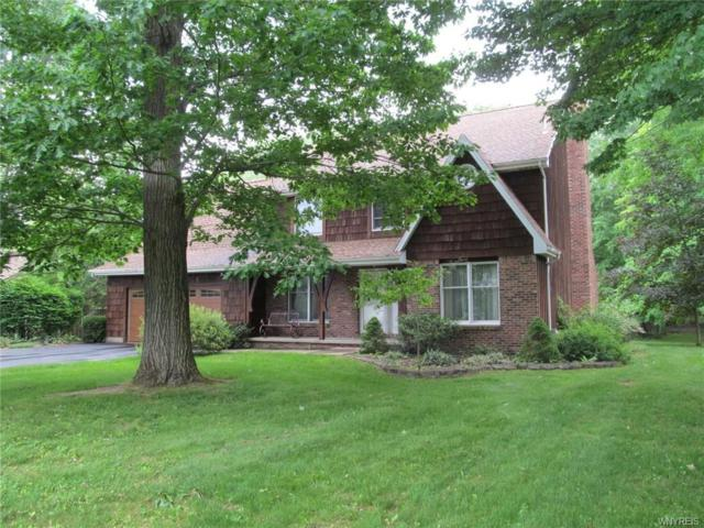 8865 Woodside Drive, Eden, NY 14057 (MLS #B1123612) :: The Chip Hodgkins Team