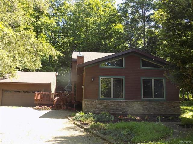 127 Deer Run, Concord, NY 14069 (MLS #B1125145) :: The CJ Lore Team | RE/MAX Hometown Choice