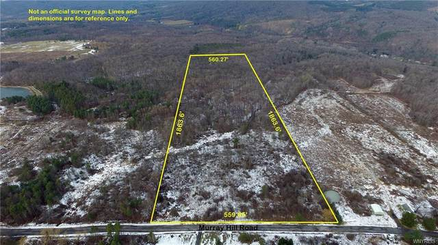 24 Acres Murray Hill Road, Colden, NY 14033 (MLS #B1127243) :: TLC Real Estate LLC
