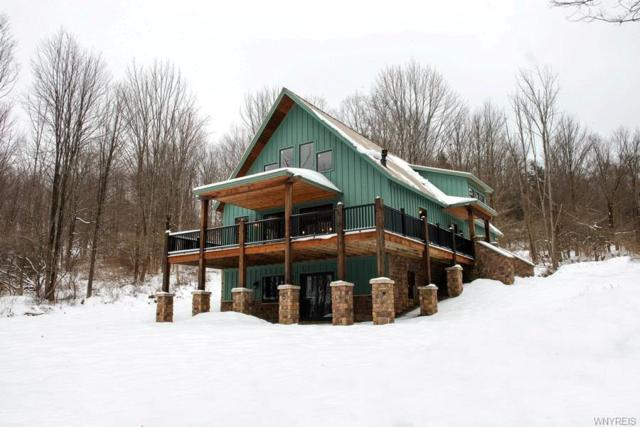 8516 Bailey Hill Rd, East Otto, NY 14729 (MLS #B1127519) :: Robert PiazzaPalotto Sold Team