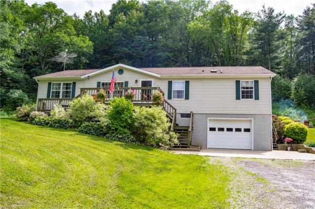 4511 Bear Hollow Road, Great Valley, NY 14741 (MLS #B1130196) :: The Chip Hodgkins Team