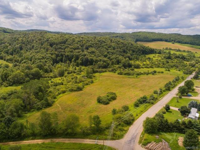 0 Liebler Road, Napoli, NY 14755 (MLS #B1131093) :: Updegraff Group