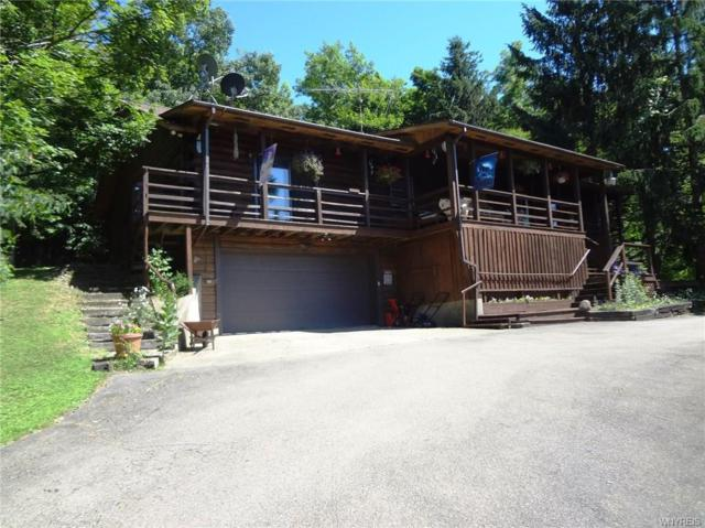 9344 Potter Hill Road, New Albion, NY 14719 (MLS #B1132301) :: The Rich McCarron Team