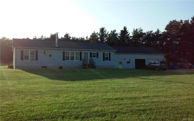 10297 Maple Grove Road, Freedom, NY 14042 (MLS #B1133139) :: The Chip Hodgkins Team