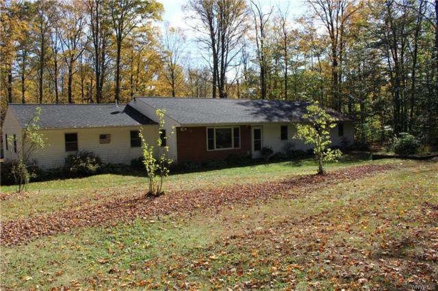 10188 Mink Hollow Road, Centerville, NY 14744 (MLS #B1133559) :: Updegraff Group