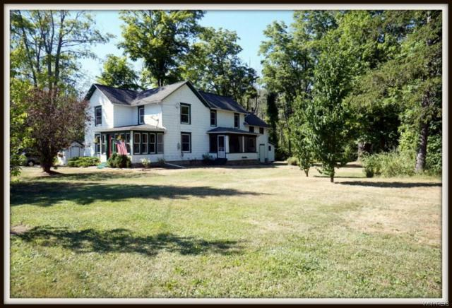 11106 Rapids Road, Clarence, NY 14032 (MLS #B1135061) :: The Rich McCarron Team