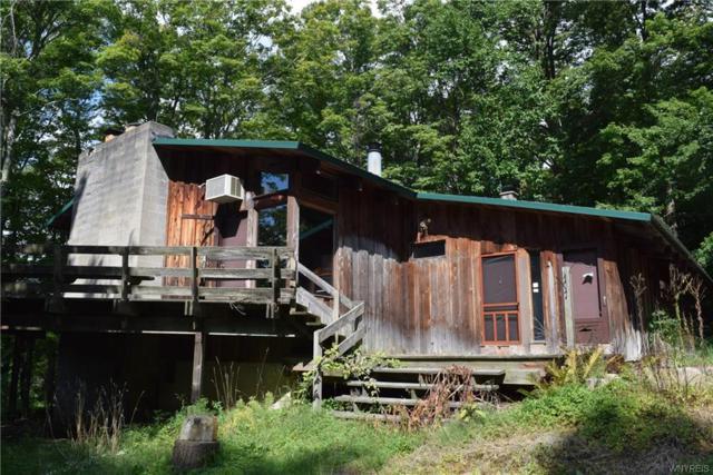 9825 New Oregon Road, Eden, NY 14057 (MLS #B1145319) :: BridgeView Real Estate Services