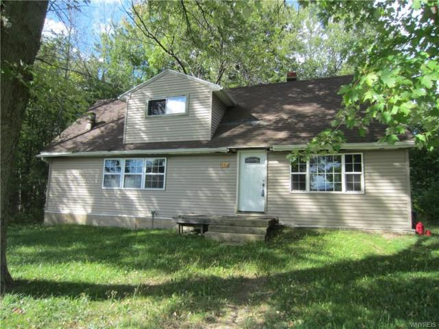 12516 Stage Road, Newstead, NY 14001 (MLS #B1148189) :: BridgeView Real Estate Services