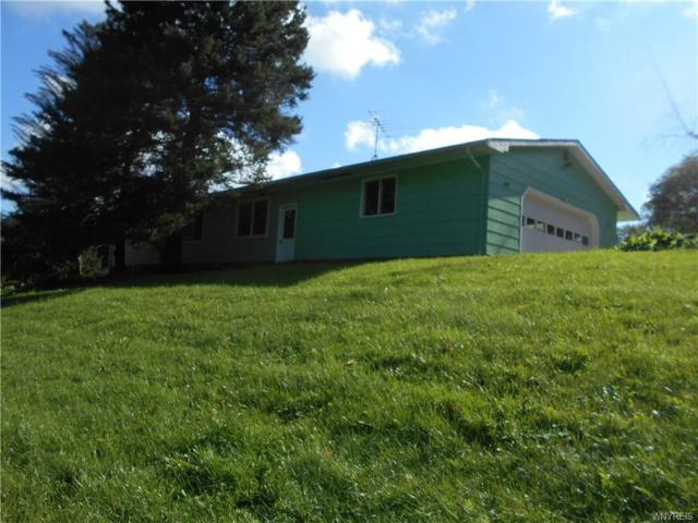 1040 W Hughes Road, Freedom, NY 14009 (MLS #B1151318) :: BridgeView Real Estate Services