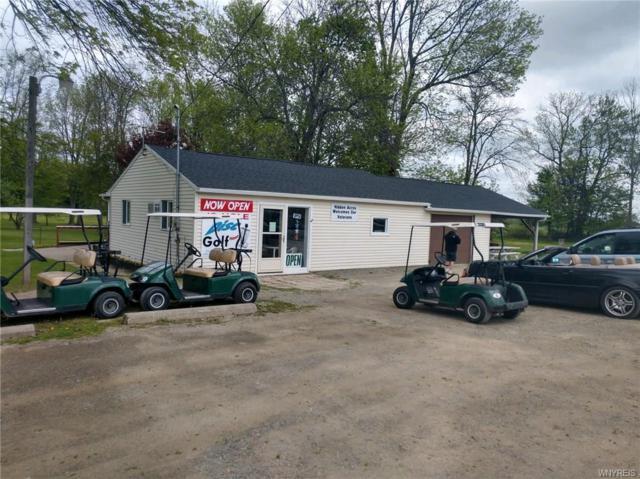 6269 Route 20A, Perry, NY 14530 (MLS #B1161928) :: The Glenn Advantage Team at Howard Hanna Real Estate Services