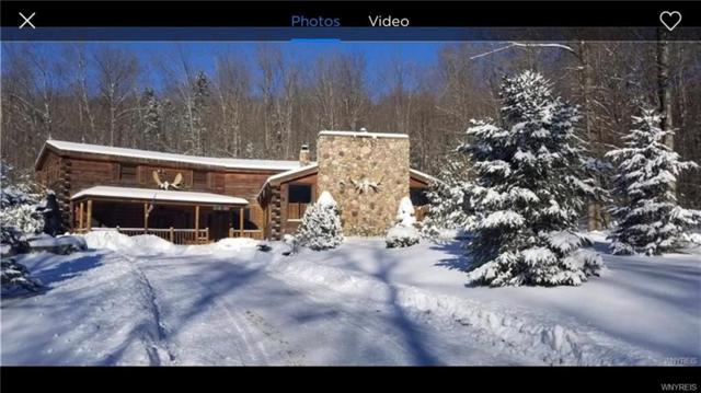 6000 Sullivan Hollow Road, Great Valley, NY 14748 (MLS #B1162323) :: BridgeView Real Estate Services
