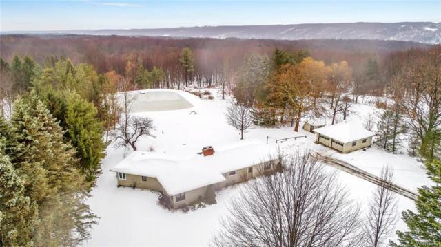 2252 Lewis Road, Aurora, NY 14139 (MLS #B1168494) :: MyTown Realty