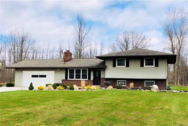9180 Wolcott Road, Clarence, NY 14032 (MLS #B1187505) :: 716 Realty Group