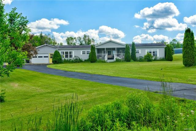 1715 Clear Meadow Drive, Freedom, NY 14065 (MLS #B1189077) :: 716 Realty Group