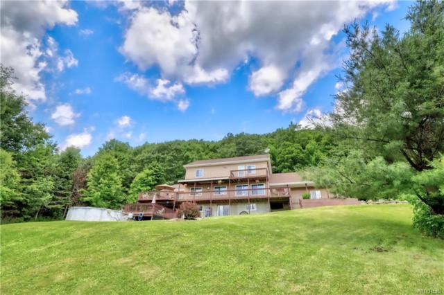 5202 Humphrey Road, Great Valley, NY 14741 (MLS #B1205571) :: The Rich McCarron Team