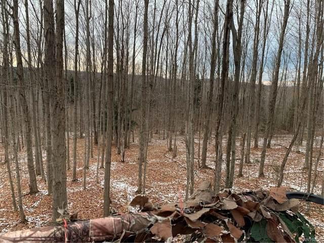 113 acres, Abbott Road, Lyndon, NY 14737 (MLS #B1243873) :: Updegraff Group