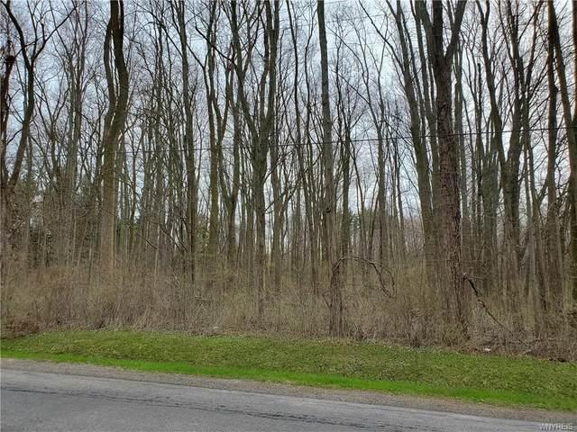 0 Murdock Road, Ridgeway, NY 14103 (MLS #B1246895) :: Lore Real Estate Services