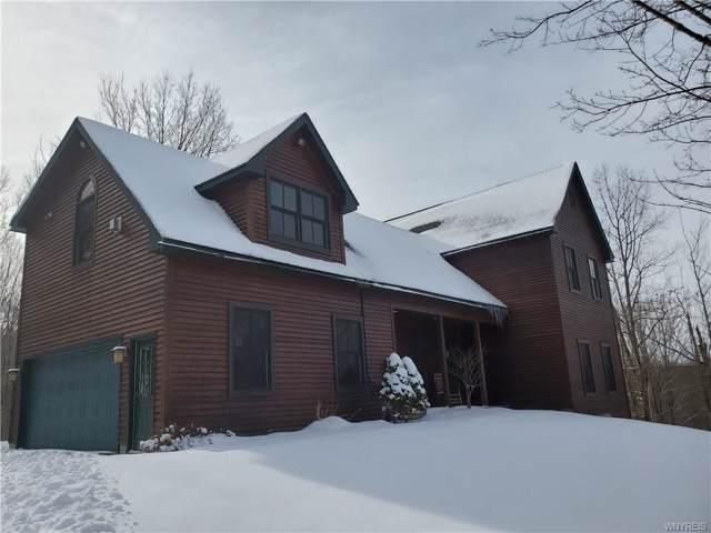 7447 Dublin Road, Mansfield, NY 14731 (MLS #B1247988) :: BridgeView Real Estate Services
