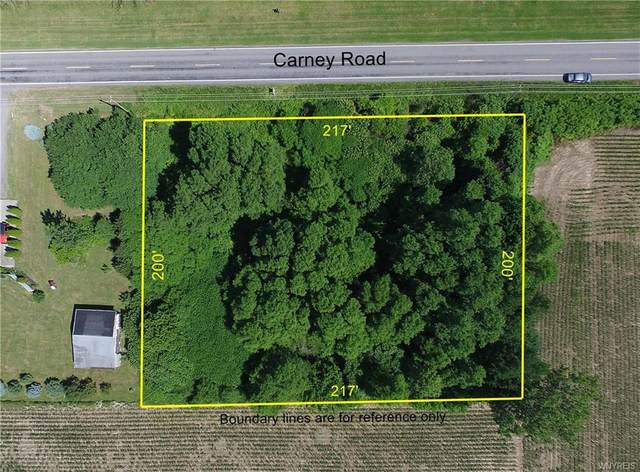 V/L Carney Road S, Newstead, NY 14001 (MLS #B1260530) :: 716 Realty Group