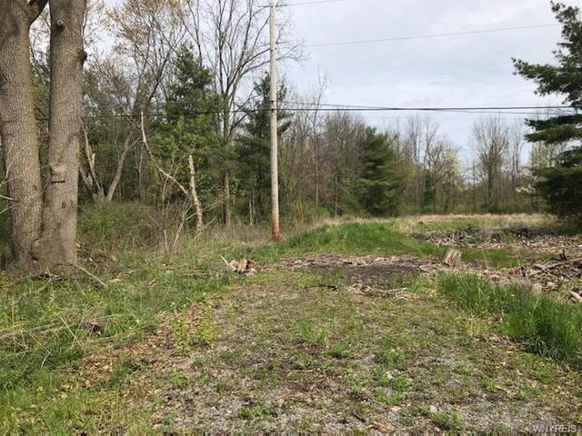 0 Old Creek Road, Kendall, NY 14476 (MLS #B1264785) :: 716 Realty Group