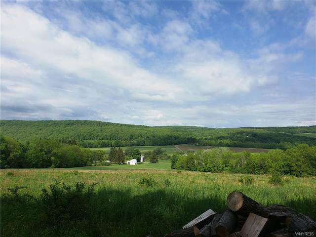 7110 County Road 7A, New Hudson, NY 14727 (MLS #B1267722) :: Robert PiazzaPalotto Sold Team