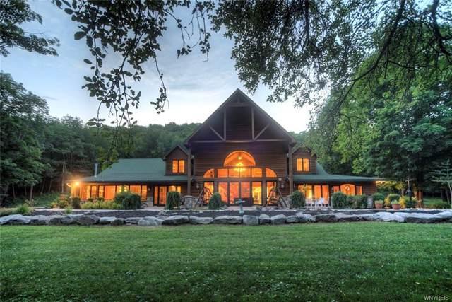 458 Wolf Run Road, Portville, NY 14727 (MLS #B1283701) :: BridgeView Real Estate