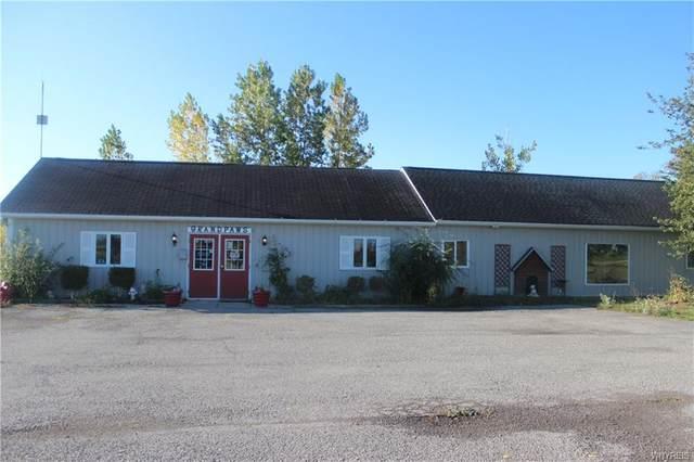 1650 Braley Road, Porter, NY 14174 (MLS #B1298689) :: BridgeView Real Estate Services