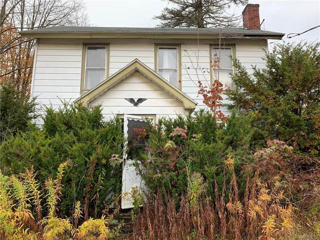 206 6th Street, Little Valley, NY 14755 (MLS #B1302966) :: MyTown Realty
