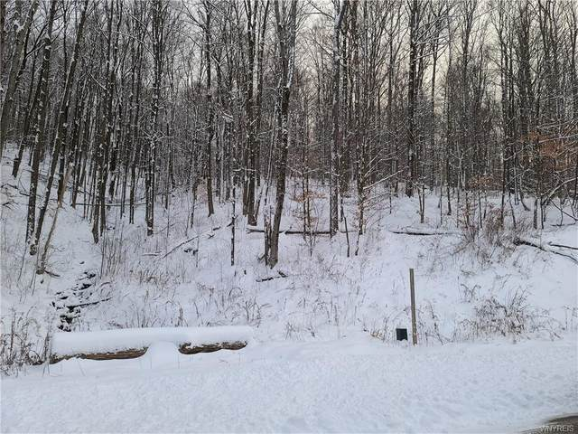 Lot #27 Westmont, Mansfield, NY 14731 (MLS #B1311812) :: Mary St.George | Keller Williams Gateway