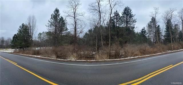 Lot Davis Road, Aurora, NY 14052 (MLS #B1313929) :: TLC Real Estate LLC