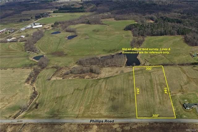 5 acres Phillips Road, Holland, NY 14080 (MLS #B1326043) :: MyTown Realty