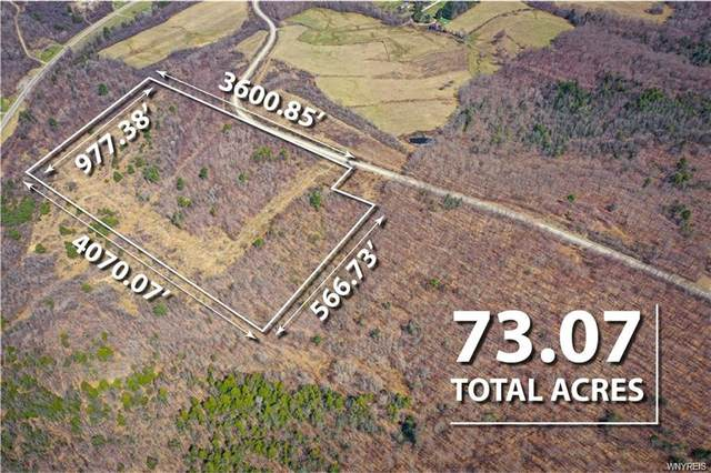 0 West Hill Road, Wellsville, NY 14895 (MLS #B1328658) :: 716 Realty Group
