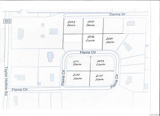 2076 Flavia Circle, Collins, NY 14070 (MLS #B1332459) :: 716 Realty Group