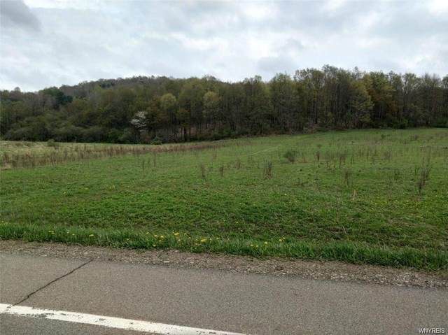 VL Nys Route 242 Highway, Franklinville, NY 14731 (MLS #B1355511) :: MyTown Realty