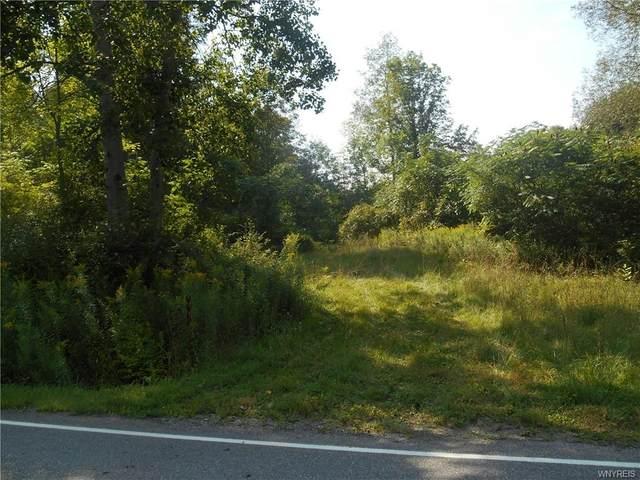 VL E Holland Road, Holland, NY 14080 (MLS #B1362375) :: Serota Real Estate LLC